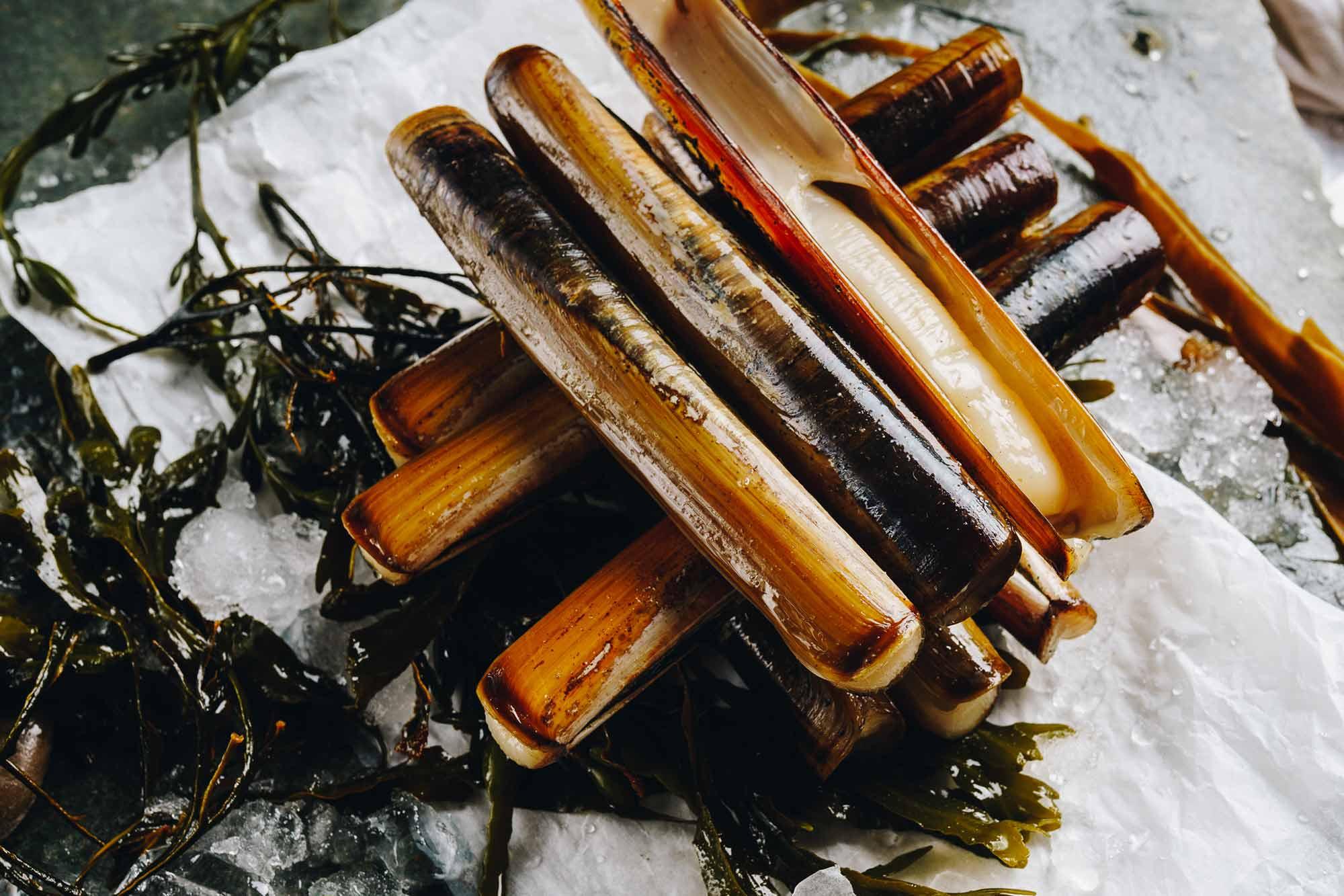 Lochfyne-Razor-clams